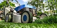 Handyman Gardening Service